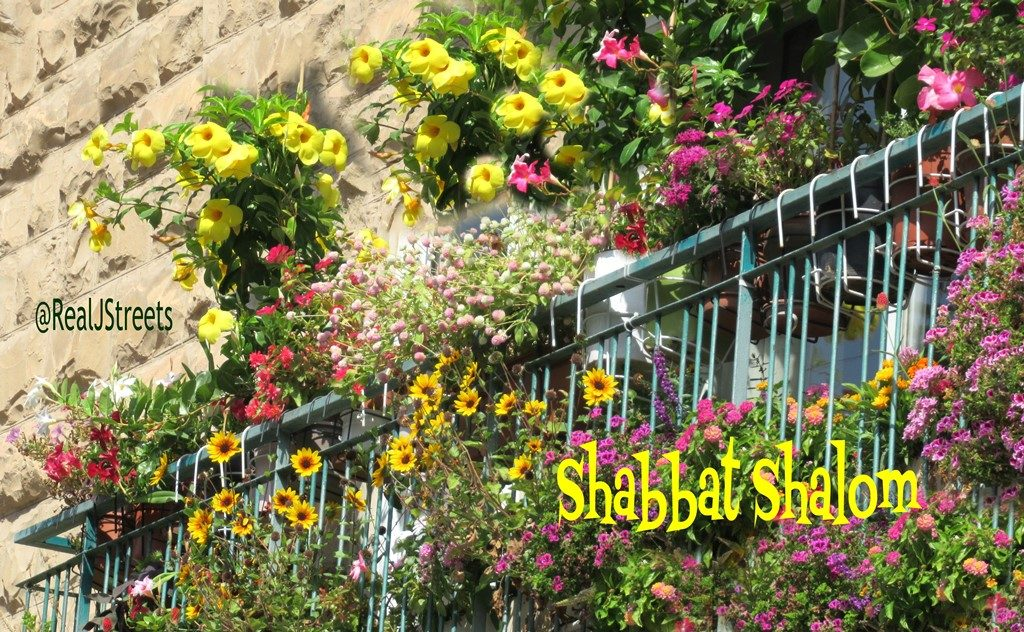 Flowers for Shabbat Shalom