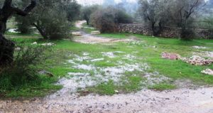 rain in Jerusalem, mud puddles