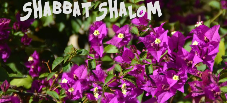 Shabbat and Shavuot Shalom